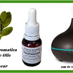 Nieuw! Ravensara aromatica Essentiële Olie