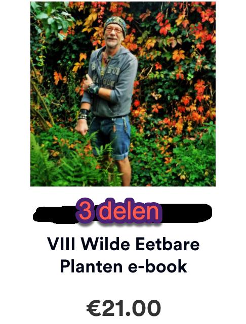 reclame wilde eetbare planten